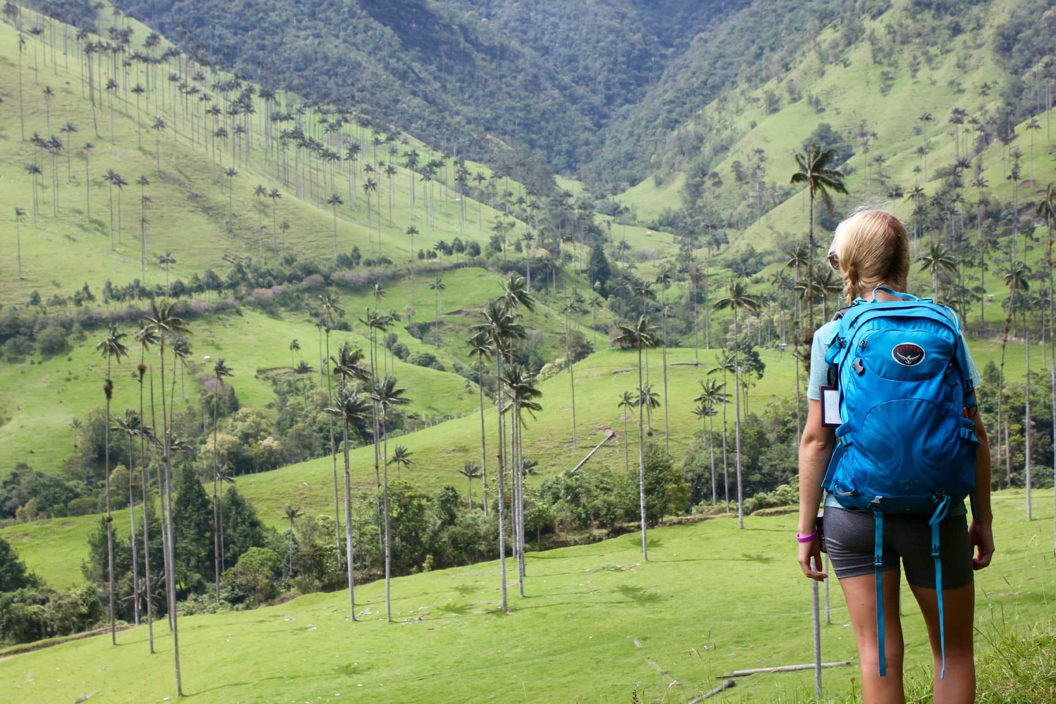 Breathtaking Valle de Cocora