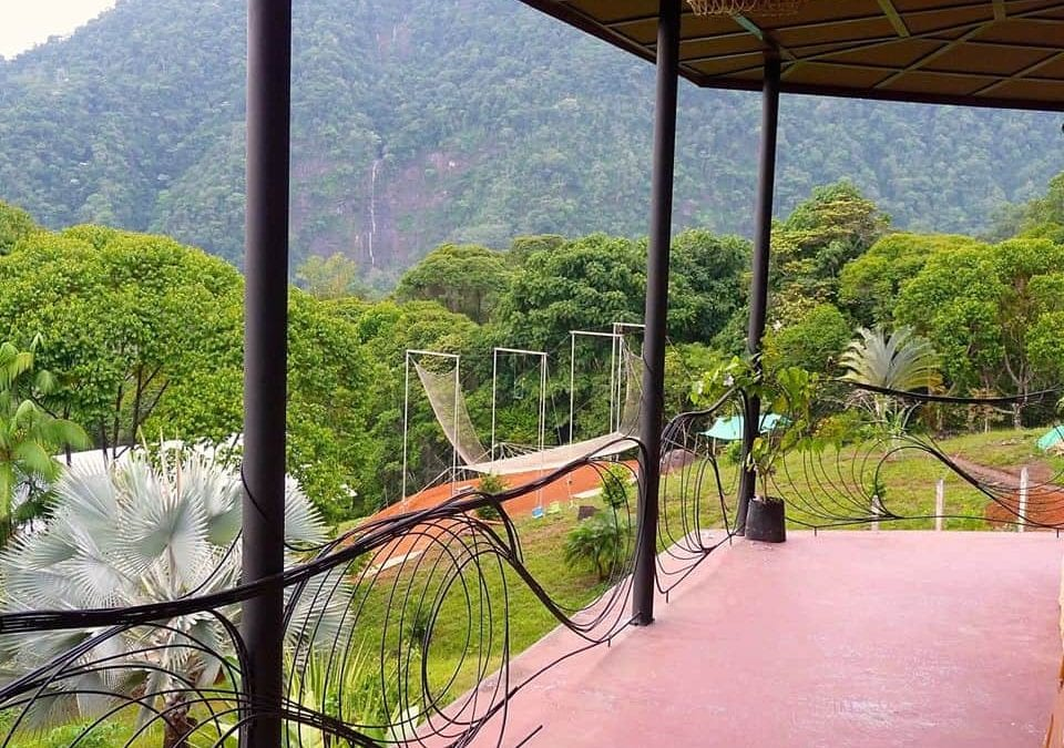 Flying Trapeze in Paradise