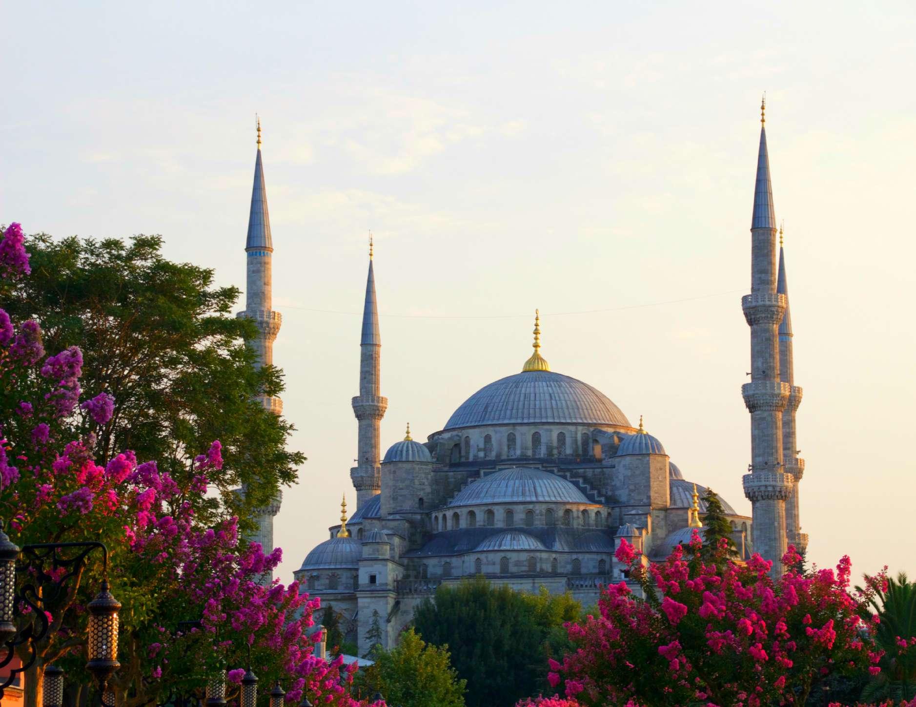 Walks of Turkey: Istanbul in a Day