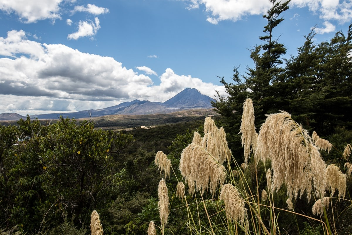 """On a clear day, tread carefully up and over Mead's Wall for outstanding views of """"Mt. Doom"""" and Mt. Raupehu. Don't miss this relatively unknown, short walk! Read more at www.thefivefoottraveler.com"""