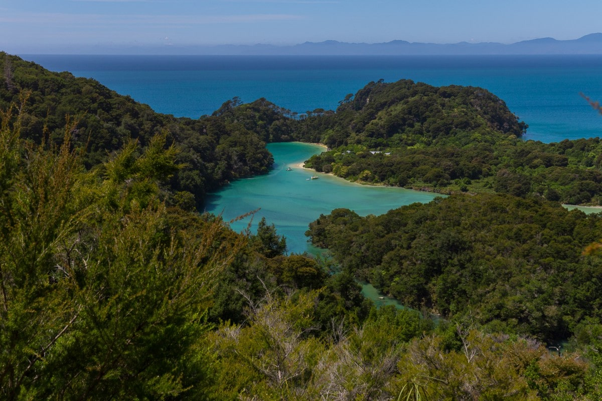 a beautiful patch of turquoise water surrounded by forest