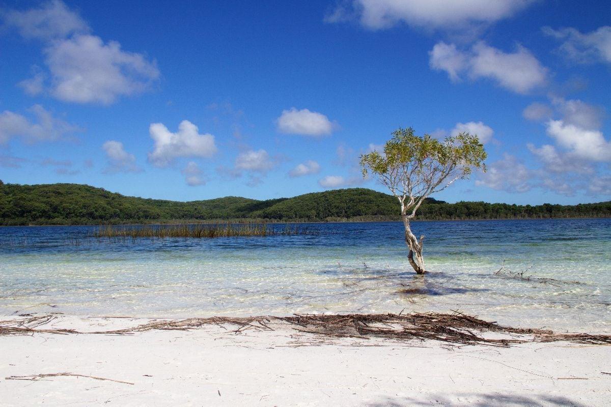 From Brisbane to Fraser Island (Day 1)