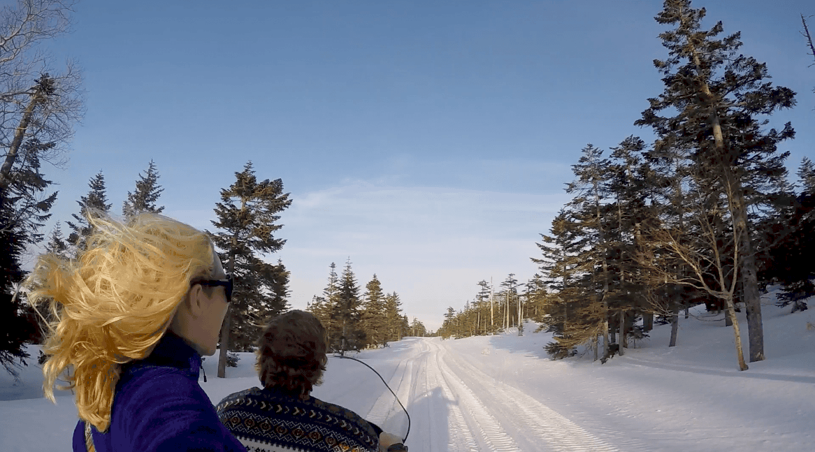 There are 5 things you must do in Yamanouchi, Japan. From Snow Monkey Park to Japan's highest ski field, there's a plethora of activities in the area! Read more at thefivefoottraveler.com