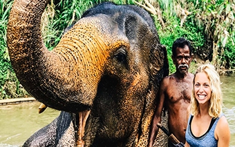 Volunteering with the Elephant Freedom Project