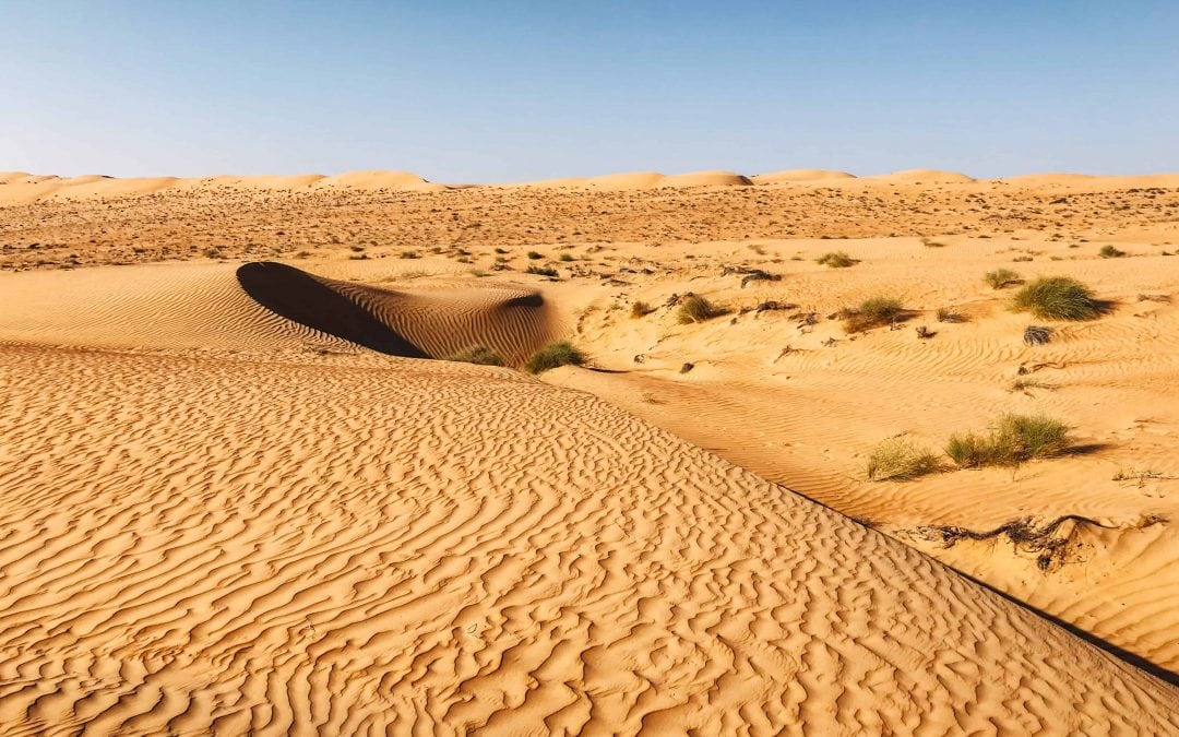 4 Outstanding Days in Oman with Oman Safaris
