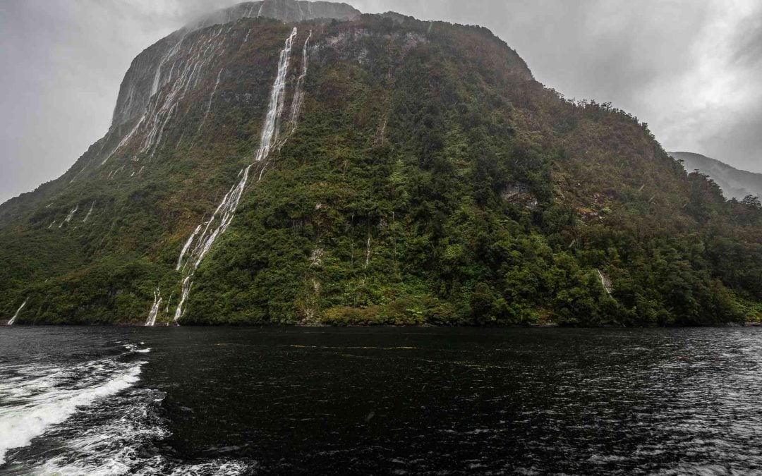 GO on a Doubtful Sound Cruise!