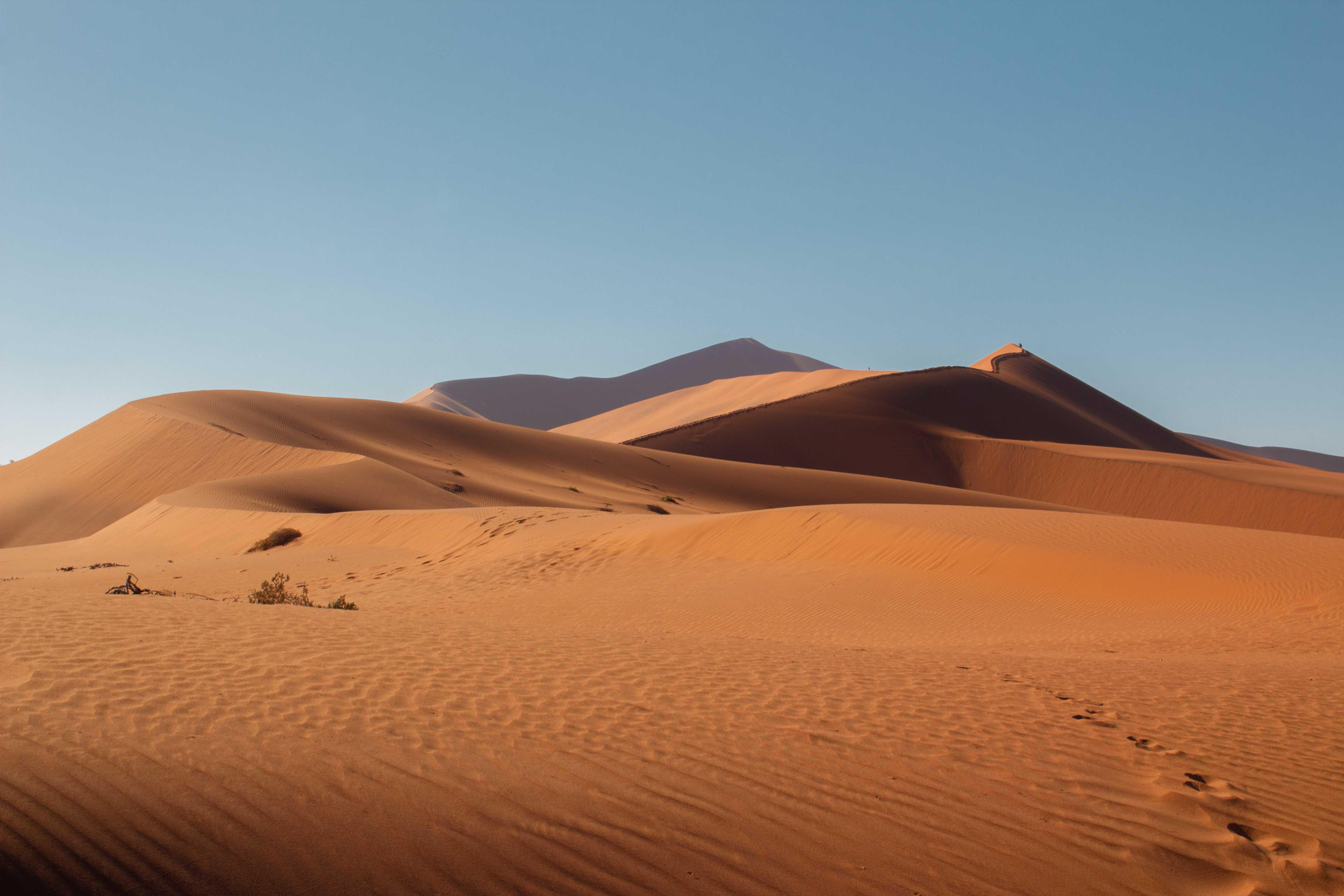 orange sand scattered through the namibian desert makes up the world's largest sand dune in sossusvlei