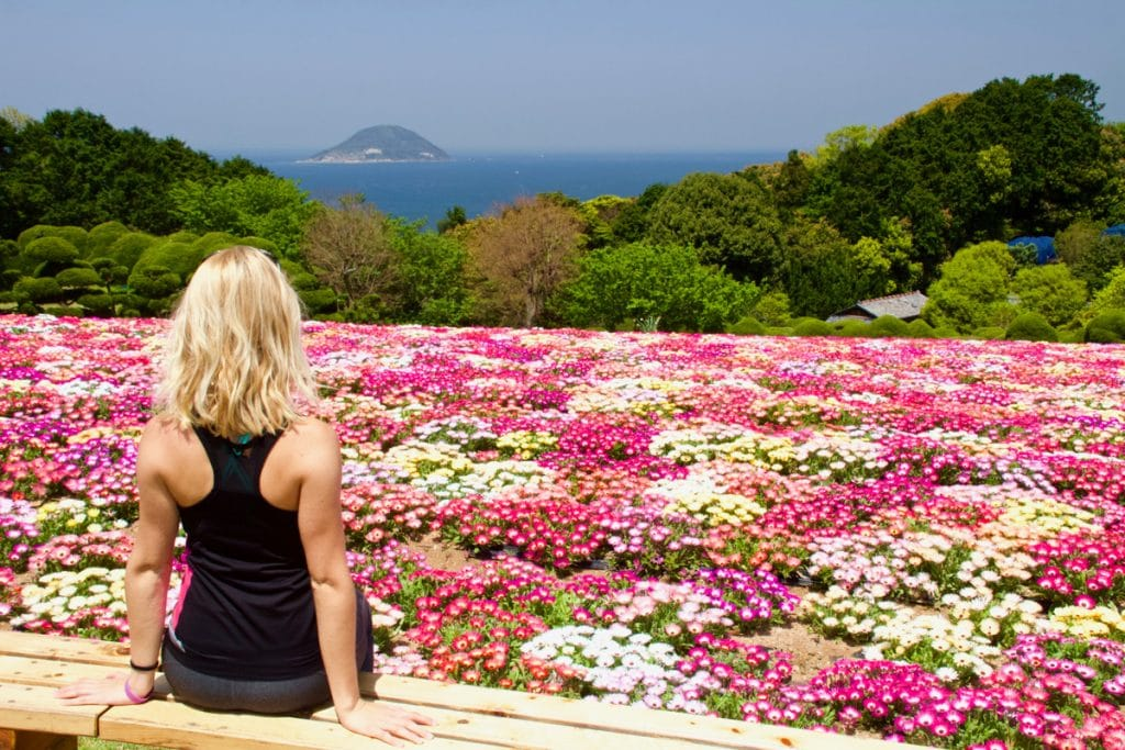 girls sits on bench overlooking pink flower field with ocean in the distance in fukuoka - places to visit in japan