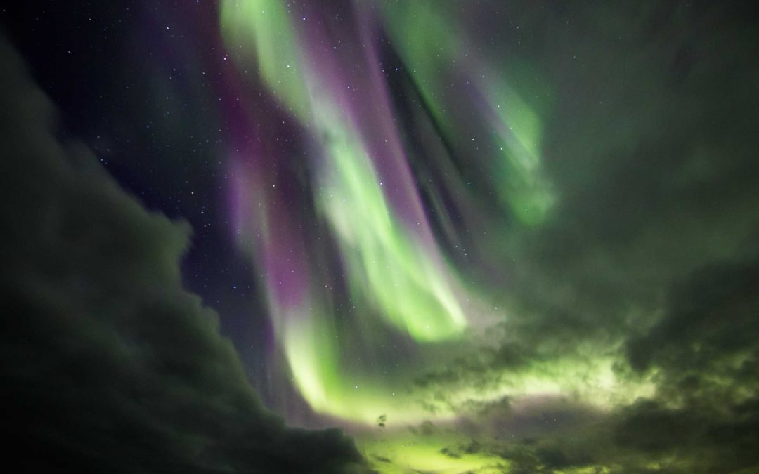Everything You Need To Know Before Planning Your Iceland Holidays   Itinerary for Iceland for 5 Days